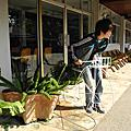 清萊Doi Tung皇太后行宮花園(泰國的瑞士)