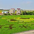 2018 仕安社區 台南好米季