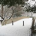紐約Blizzard暴風雪(1)Central Park