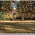 倫敦聖詹姆斯公園