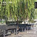2021 - 第一季慢跑、運動短記