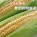 【玉米抗衰老!煮的時間越長越好】