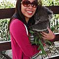 澳洲-動物