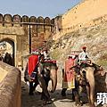 北印度 捷布爾(齋浦爾)的 琥珀堡(Amber Fort) ~ 2016.12.06 蘋果日報