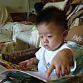 沙西米愛看書
