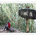 2008/04/04大凍山露營