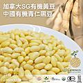 SG有機黃豆