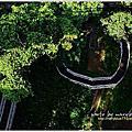 竹崎公園天空走廊.花仙步道.萬竹園