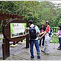 霧峰桐林步道+奧山