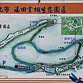 139桐花公路