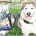 【試吃】冠能狗狗-「頂級鮮肉,營養保護」體驗