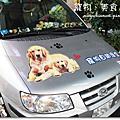 2010-12-7「狗來富」自助洗