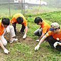 2010/05/22風信子協會農事體驗服務