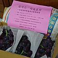 大村葡萄黃有寬葡萄