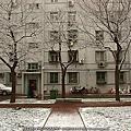 20071210 07年冬季的第一場雪