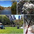 2012初春紐約行