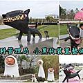 2019.03.03南科管理局小黑狗狗裝置蓋術