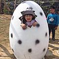 小雞蛋5Y2M