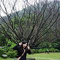 20070219~20Family遊陽明山住中國麗緻