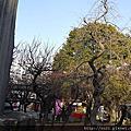 2012.02.2湯島天神梅まつり1 -