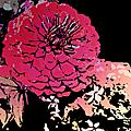 野玫瑰的插畫作品集