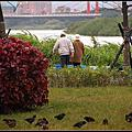 華江橋河畔