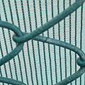 蛇去大運會網球甲組燃燒生命