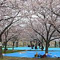 090403日本大阪城公園+阪神百貨