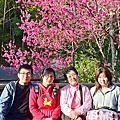 2014.01.29~02.02 光媽光姊台灣小旅行