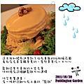 20111106 八五山古道杉木林浴、數碼天空下午茶