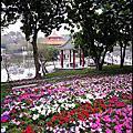2012-02-03 [台南] 台南公園百花祭