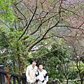 2006.02.08沒有櫻花的烏來及碧潭之旅