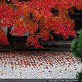 2012-11-26 南禪寺天授庵