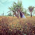 婚紗攝影-山湖花海