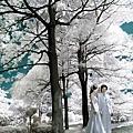浪漫唯美婚紗照