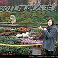 20110213 陽明山 賞櫻花+採海芋