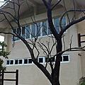 20130213 情人湖 秀峰瀑布 茄冬瀑布
