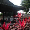 070206博物館+林家花園