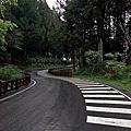 20060324_阿里山三日遊(一)