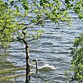 漫步英國湖區
