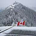 加拿大之旅12'0224~0304