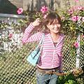 【2006】後花園