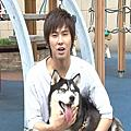 TV5XQ's Pets