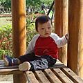 大安森林公園2009花卉展