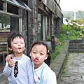 2010陽明山花季