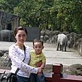 走走走一起去動物園玩99.03.06
