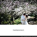 胖哥作品集之櫻花香港客人阿Ming&Cindy自助婚紗