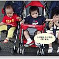 小桃桂寫真集(1歲1個月)