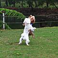 綠風跑跑趴(2010.11.13)