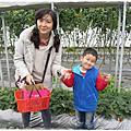 2104清香農場採草莓